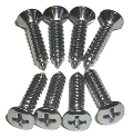 67-69 Camaro Carpet Sill Plate Screw Kit